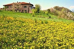 Italian holiday vacation apartment rental business for sale in Piedmont Italy - The property is in a tranquil position
