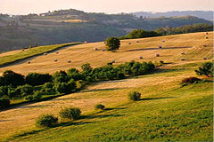Italian holiday vacation apartment rental business for sale in Piedmont Italy - Panoramic views