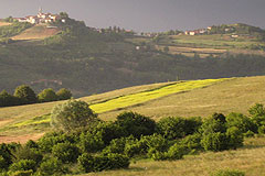Italian holiday vacation apartment rental business for sale in Piedmont Italy - Panoramic views surround the property