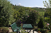 Restored Country homes for sale in Piemonte. - Garden area