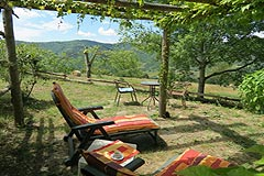 Holiday Rental Apartments business for sale in Piemonte Italy - Terrace with views