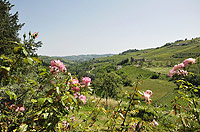 Luxury Country House for sale in Piemonte - Panoramic views from the studio
