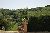 Bella cascina in vendita in Piemonte - Views from the property