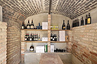 Bella cascina in vendita in Piemonte - Wine cantina underneath the studio