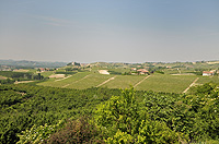 Historic Property for sale in Piemonte Italy. - Panoramic views from the luxury Langhe home