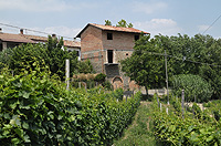 Italian Rustic House for sale in Piemonte - Exciting investment opportunity close to Barbaresco enjoying panoramic and romantic views of the surrounding villages, prestigious Barbaresco vineyards and Alpine mountain range.
