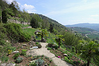 Italian Country Home for sale in Piedmont - Landscaped gardens