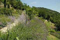 Italian Country Home for sale in Piedmont - Landscape gardens