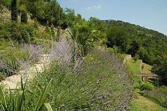 Cascina in vendita in Piemonte - Landscape gardens