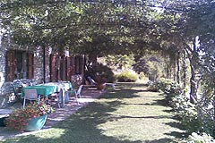 Cascina in vendita in Piemonte - Garden area in front of the house