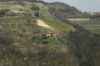 Piemontese farmhouse for sale with Barbera,Moscato and Dolcetto vineyards. - View of property