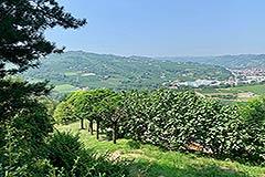 Rustico in vendita in Piemonte - Views