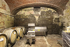 Successful and established business for sale in Piemonte, Italy. - Wine producing area