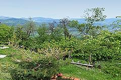 Rustico in vendita in Piemonte - Garden area