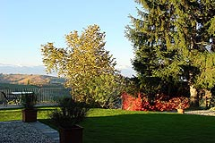 Country estate for sale in Piemonte Italy. - Garden area