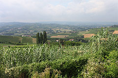 Italian Farmhouse Renovation Project with mountain views - Panoramic views from the property