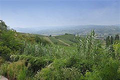 Rustico in vendita in  Piemonte - Views from the property