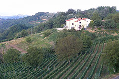 Country House for sale in the Langhe region (Piemonte) - The property is in a panoramic position