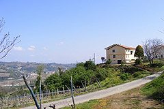 Country House for sale in the Langhe region (Piemonte) - Country home  situated close to the delightful town of Santo Stefano Belbo