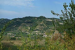 Country House for sale in the Langhe region (Piemonte) - Views from the property
