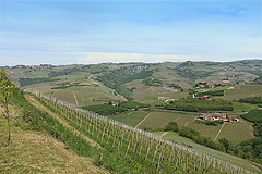 Country House with vineyard views for sale in Piemonte. - Panoramic views from the property