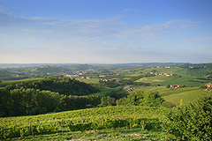 Country Home in the Langhe - Views from the property