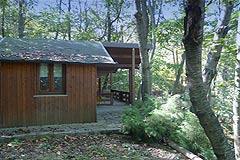 Country House - Garden area