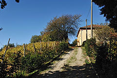 Traditional Italian Country House for sale in Piemonte. - Entrance to the property