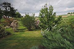 Raffinato appartamento in vendita in Piemonte - Garden area