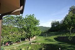 Prestigiosa Villa in vendita in Piemonte - Garden area