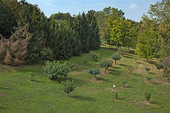 Splendida cascina in vendita in Asti – Piemonte - Well maintained spacious garden area