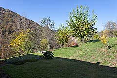Beautiful Italian Country House for sale in Piedmont. - Land with the property