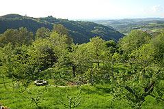 Häusergruppe zum Verkauf im Piemont - Spacious garden  ares