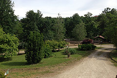 Country House in the Asti region of Piemonte. - Part of the property's grounds