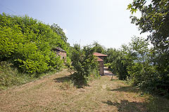 Traditional Country Farmhouse for sale in Piemonte - Land surrounding the property