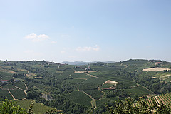 Appartamento in vendita in Piemonte - Panoramic vineyard views