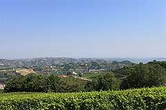 Beautiful Country House & Swimming pool with vineyard views in Piemonte. - Vineyard views
