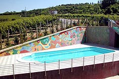 Beautiful Country House & Swimming pool with vineyard views in Piemonte. - Vineyard views with pool