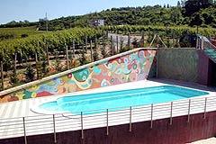 Bella cascina con piscina, vista panoramica in Piemonte. - Vineyard views with pool
