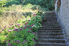 Country Cottage for sale in Piemonte - Stone stairs