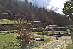 Country Houses for sale in Piemonte - Land with the properties