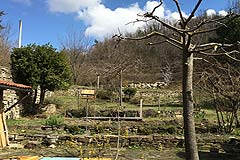 Cascine in vendita in Piemonte - Land at the back of the properties