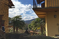 Country Houses for sale in Piemonte - The properties have several palm trees
