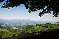 Country Stone House for sale in Piemonte - Panoramic views from the property