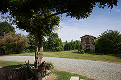 Country House & Truffle farm for sale in Piemonte