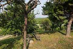 Italian Villa for sale in Piemonte - Garden area