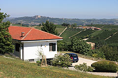 Country House with stunning vineyard & mountain views - The property enjoys an elevated position