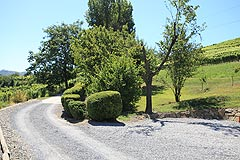 Country House with stunning vineyard & mountain views - Private entrance to the property