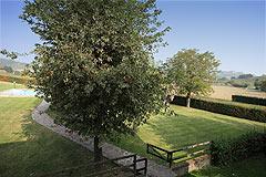 Bellissima proprietà equestre in vendita in Piemonte - Garden areas