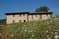 Restored Langhe Stone Farmhouse for sale in Piemonte - Langhe Stone Farmhouse in tranquil position
